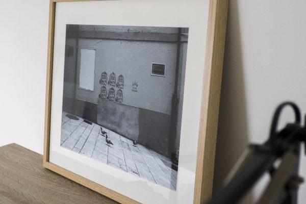 dlux photo lab